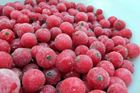 Picture of Frozen Red Currant Kg