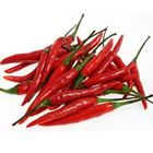 Picture of Chilli Long Red 100g Pack